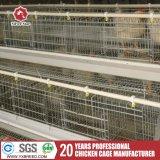 Chaud et froid de la cage de la couche de volaille galvanisé