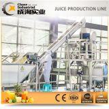 주문을 받아서 만들어진 석류 주스 생산 라인 또는 생산 라인
