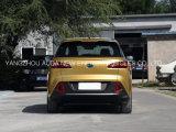 Populaire Elektrische Auto SUV met 5 Zetels