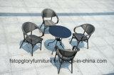 حديد إطار مع [تإكستيلين] كرسي تثبيت أثاث لازم خارجيّ
