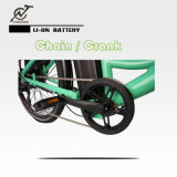 Bici elettrica 36V 250With 36V 350W della città verde