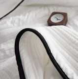 Copriletto leggero stabilito dell'hotel di qualità della trapunta del Comforter dell'assestamento per personalizzato