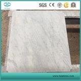 Carrara White Marble, Bianca Carrara Mosaic, Basts for Dirty