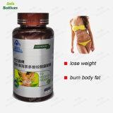 100 % efficace solide des aliments de santé à base de plantes Capsule Slim (60 pilules) pour la perte de poids réduit la masse grasse corporelle
