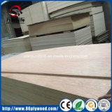 madera contrachapada comercial del álamo de 18m m/madera contrachapada de Bintangor del fabricante