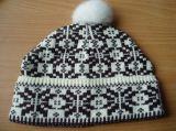 Fashion Hat/Winter Hat (WXH-0002)