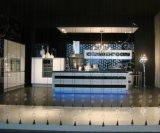 Armoire de cuisine de la laque (APT-25)