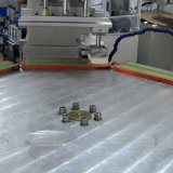 Machine d'impression automatique de garniture de 2 couleurs pour l'échelle en plastique