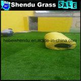 grama falsificada bicolor da densidade 16800tuft/Sqm para o jardim de infância