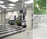 Tegel 600*600mm van het Porselein van de rots Grijze Dubbele Lading Opgepoetste voor Vloer en Muur (X6959W)