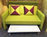 Небольшое подразделение диваном-кроватью с Hided таблица