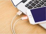 1m iPhone, Samsung 의 유형 C 자동차를 위한 나일론에 의하여 격리되는 USB 비용을 부과 케이블
