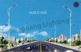 Nuova lampada di via di disegno IP65 100W-400W