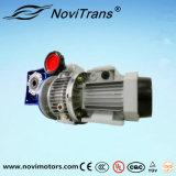 Motores flexibles trifásicos del motor síncrono del imán permanente con el gobernador de velocidad y el desacelerador (YFM-132/GD)