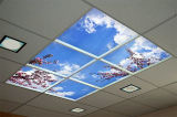 Il buon disegno decorativo riveste il colore di pannelli che cambia il comitato del soffitto LED dei lucernari del LED