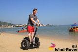 Wind-Vagabund-Fabrik-Preis-Selbst, der elektrischen Golf-Roller balanciert