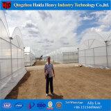 Túnel de policarbonato Tropical domo geodésico de gases de efecto invernadero agrícola
