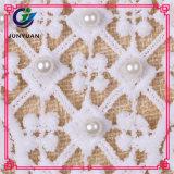 Confecção de malha de crochet Lace Flower Swiss Lace Collar