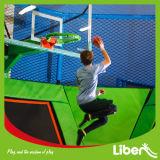 Trampoline van het Park van de Krottenwijk van de Hemel van de tiener de Binnen voor Verkoop