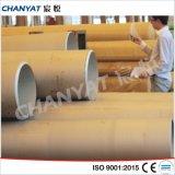 Tubo dell'acciaio inossidabile di ASME Smls (TH304H, TH310H, TH316H)