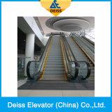 Escada rolante pública do passageiro do transporte automático superior do fornecedor superior de China