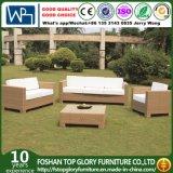 Muebles del patio del sofá de la rota del amarillo del diseño moderno (TG-JW15)