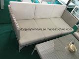 Мебель сада ротанга PE самой последней алюминиевой софы рамки установленная (TG-8014)