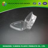 Vielseitiger Kunststoffgehäuse-Behälter mit Kappe