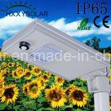 Piscina 8W solar integrada en una calle LED lámpara de jardín con certificados