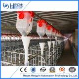 Zufuhr-Liefersystem verwendet im modernen Schwein-Bauernhof