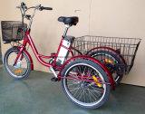 Bicicleta eléctrica de tres ruedas con el motor 250W