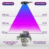 2017 wachsen neue Herstellung LED mit vollem Spektrum hell