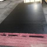 A película do preto do folheado do núcleo do Poplar enfrentou a madeira compensada do Manufactory (12X1250X2500mm)