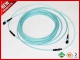 100Gbps 24 memorie MTP al ponticello a fibra ottica multimoda del rivestimento dell'assemblea plenaria Non-appuntato OM4 di MTP