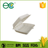 La casella a gettare all'ingrosso di Bento biodegradabile toglie le caselle calde di imballaggio per alimenti