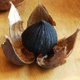 Чеснок заквашенный здоровой едой единственный черный для кулинарного
