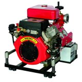 Dieselmotor-Feuer-Pumpen mit 25HP