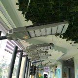 Migliore indicatore luminoso di via solare di vendita dell'ibrido LED del vento (BD-TYN0001)
