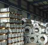 [هوت-ديبّد] نوعية [غرنتد] يغلفن فولاذ لأنّ تسليف صفح