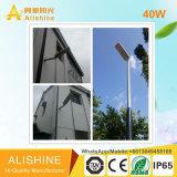 Réverbère solaire neuf Integrated de la route 40W DEL