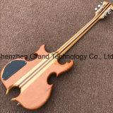 Guitare électrique spécial en forme personnalisé (GM-23)