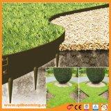 Edgings d'acciaio d'abbellimento verde
