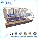 Système d'alimentation Automagtic Gestation crate