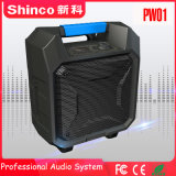 Shinco Mobile USB portable sans fil FM Mini haut-parleur étanche Bluetooth