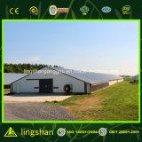 プレハブの低価格の鋼鉄家禽の小屋デザイン