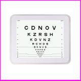 눈 장비 중국 비전 도표
