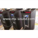 Berufsstadiums-aktive Zeile Reihen-Lautsprecher mit DSP