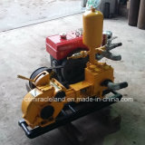 Bw 160 Pompe à piston Simplex de boue