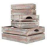Conjunto de país acabamento rústico Madeira Castanha caixas de nesting