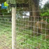 トゲワイヤーが付いている電流を通された牛塀